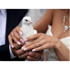 Свадебный маникюр невесты - красота на кончиках пальцев